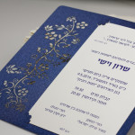 הזמנות חתונה יוקרתיות - שרון וישי
